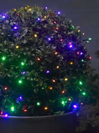 Smart Garden 100 Coloured LED String Lights - Battery Powered