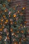120 LED Large Amber Autumn Tree