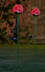 Smart Garden Decorative Solar Powered Rose Bloom Flowers -  Set of 2