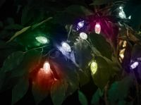 50 Extra Large Bulb String Lights - Multi-Coloured