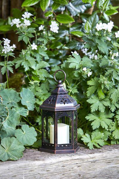 Smart Garden Maroc Lantern 163 6 99