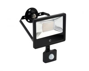 Collingwood 30W Colour Switchable Floodlight with Motion Sensor