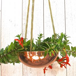 95cm/3ft 1¼in Copper Hanging Planter with Chain