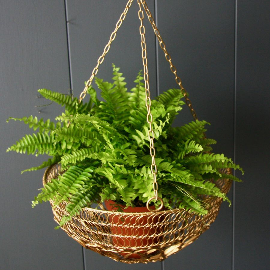 45cm/1ft 5¾in Gold Wire Hanging Basket