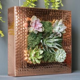 25cm/9¾in Copper Square Planting Frame