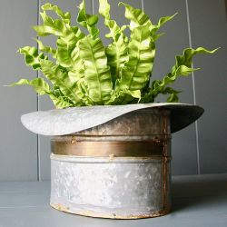 37cm/1ft 2½in Zinc Top Hat Planter