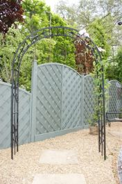 Buckingham Metal Arch / Trellis for Climbers