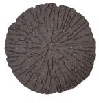 Cracked Log Stepping Stone Earth - Pack of 4