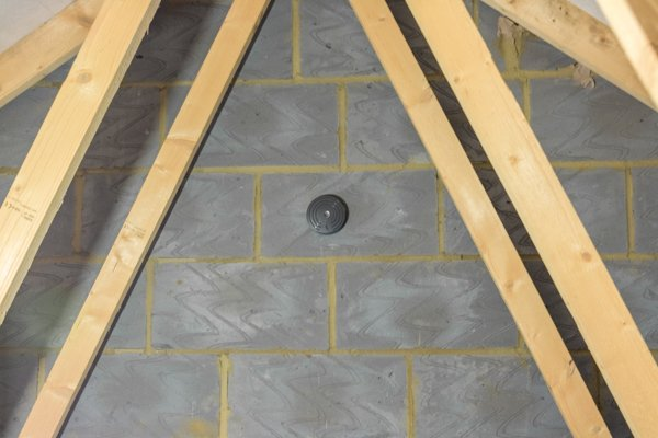 How To Remove Rats In The Loft The Primrose Blog