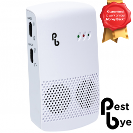 Advanced Spider Repellent - Whole House, By PestBye®
