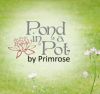 Pond in a Pot Complete Kits