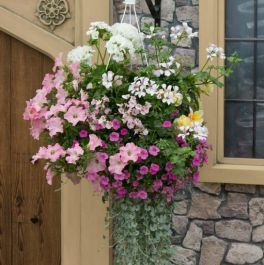'Bridal' Speed Planter For Hanging Baskets