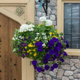 'Nautical Chic' Hanging Basket Speed Planter