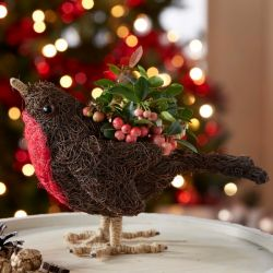 Christmas Robin | Gaultheria | By Plant Theory
