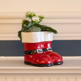Kalanchoe Plant | 9cm Santa Boots Pot | By Plant Theory