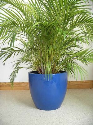 Fibreglass Eggpot Planter – French blue and other colours - H40cm x D44cm
