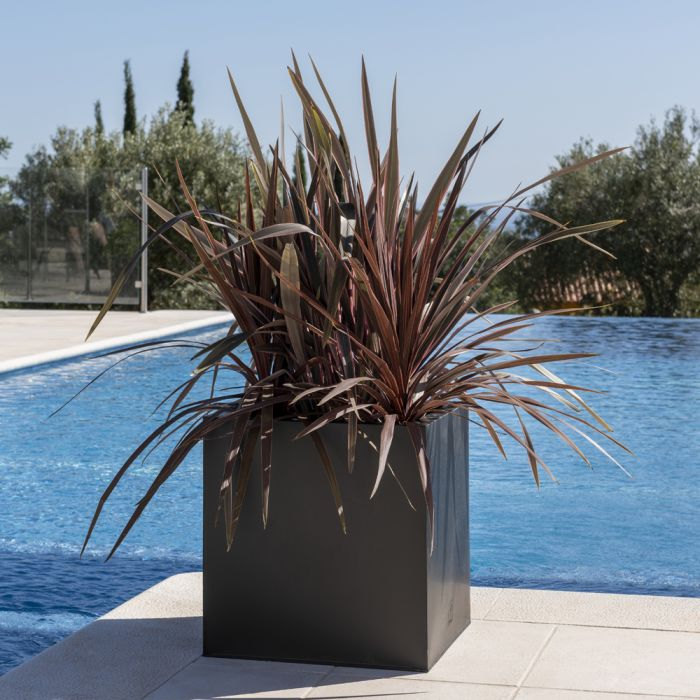 50cm Zinc Galvanised Black Cube Planter - By Primrose™