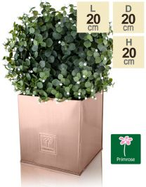 20cm Zinc Galvanised Cube Pot in a Copper Finish by Primrose™