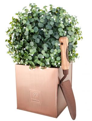 20cm Zinc Galvanised Cube Planter in a Copper Finish by Primrose®