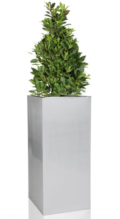 H100cm Zinc Galvanised Tall Silver Cube Planter - By Primrose™