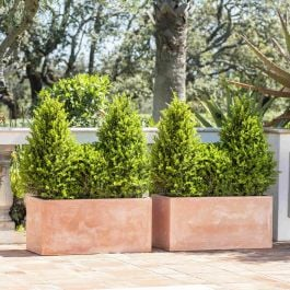 80cm Terracotta Fibrecotta Trough Planters - Set of 2