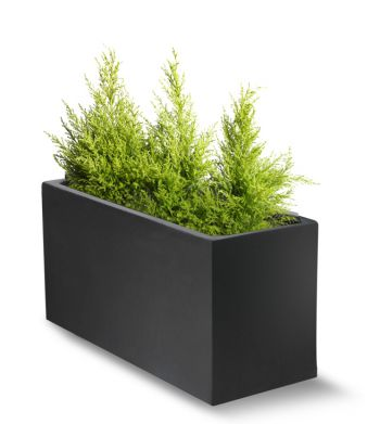 100cm Polystone Black Trough Planter - Set of 2