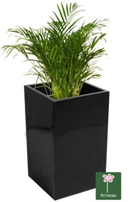 H75cm Tall Cube Fibreglass Gel Coat Planter in Black - By Fibre-G�