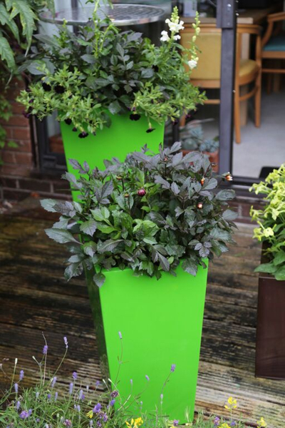 H60cm Fibreglass Flared Square Gel Coat Planter in Lime Green - By Primrose®