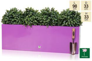 L98cm Gloss Fibreglass Trough Planter in Purple - By Primrose®