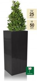 H50cm Zinc Galvanised Tall Platinum Cube Planter - By Primrose™