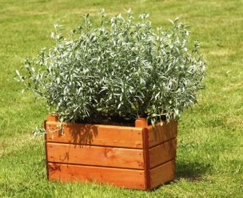 W38cm Small Wooden Square Planter With Feet