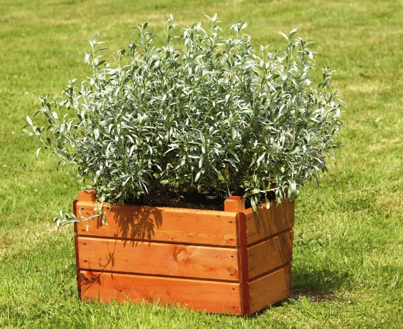 W43cm Large Wooden Square Planter With Feet