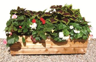 L49.5cm Small Wooden Deep Planter with Feet