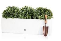 L80cm Gloss Fibreglass Trough Planter in White - By Primrose®