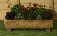 L60cm Concrete Natural Finish Long  Trough Planter