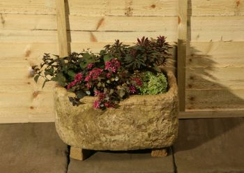 L44cm Concrete Rustic Finish Small Deep Planter