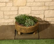 D39cm Concrete Natural Finish Shallow Dish Planter