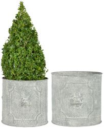 Set of Two Round Lion Head Planters - 24 cm (9.4 in) x 25.1 cm (9.8in)