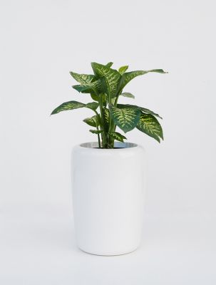Tracino Medium Planter in White – H60xDia50