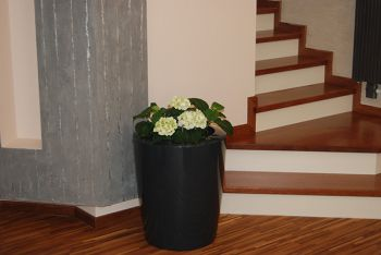 Anakena Medium Planter in Anthracit – H60xDia50
