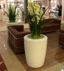 Anakena XLarge Planter in Cream – H100cm x Dia80cm