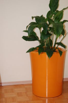Garafia Small Planter in Orange – H45xDia38
