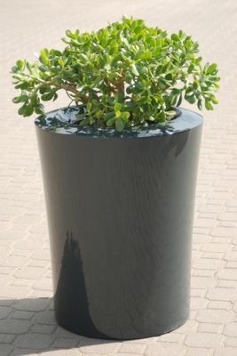 Garafia Medium Planter in Anthracite – H60xDia50