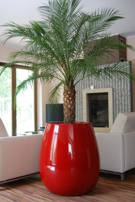 Silba Large Planter in Red  – H75xDia70