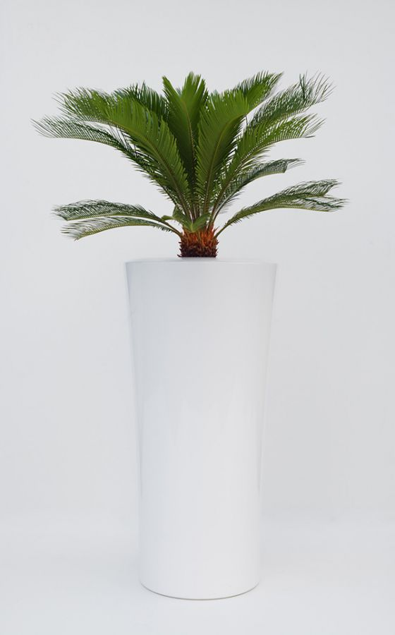 Parga XXLarge Planter in White – H125xDia60