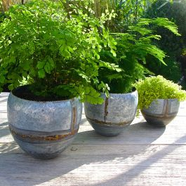 Set Of 3 Zinc Planters With Brass Trim - H16cm/13cm/10cm