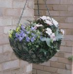 Standard Wire Hanging Basket Planter - 35cm