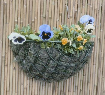 40cm Standard Wire Wall Basket Planter