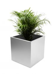 Cube Brushed Stainless Steel Planter - 60cm