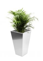 Square Taper Brushed Stainless Steel Planter - 40cm x 70cm